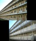 公共住宅目隠し改修(廊下) | 住宅資材... 公共住宅目隠し改修(廊下)