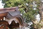 三皇神社 | 社寺 | 竣工作品 | 香... https://www.suga-ac.co.jp/archives/005/202001/789635be12f04d6342c5b963c38a6a04.jpg