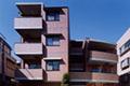 主な仕事3 集合住宅(八島建築設計室) /img/paulownia/paulownia-ex1_SS.jpg