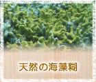 自然素材・健康住宅 サンゴ壁の家レーベン... /img/re_kaisou.jpg