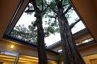 Works-教育施設|ぼんぼり光環境計画 pj/8_2s/mukunoki/images/muku009.jpg