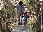 作例フォトアルバム/施工例写真集 いづみ... カバーイメージ