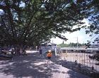 ふじようちえん|教育施設実績|手塚建築研... works/education/fujiyochien/img/002.jpg