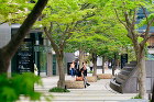 東京ミッドタウン | 複合開発 | Pr... projects/p4iusj0000000ifo-img/pj0003_07.jpg
