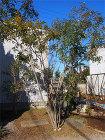 剪定施工例  造園・庭造り、植木の剪定は...