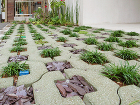 植生緑化ブロックと化粧砂利