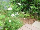 東京エクステリア施工例、緑豊かなナチュラ... お手間のかからない植物