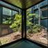 建築設計実績 翠松園の家 photo7
