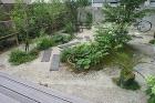 北庭の家 理想的なプライベート庭のある戸... /works2/kitani/IMG_6919_960.jpg