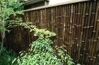 【実例:雑木】神奈川県鎌倉市T邸の庭 |... /wp-content/uploads/2013/07/DSC_0036-294x195.jpg
