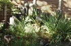 【実例:和風】東京都杉並区Y邸の庭 | ... /wp-content/uploads/2013/12/DSC_0023-294x195.jpg