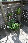 【実例:デッキ・雑木】東京都町田市H邸の庭