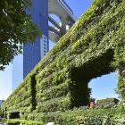 希望の壁, 大阪府大阪市, 2012-2013