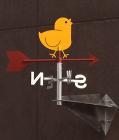 神戸の保育園 | フィールド建築設計舎 wp-content/uploads/20-2.jpg