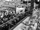 高床の家  | フィールド建築設計舎 wp-content/uploads/E02-1400x1050.jpg