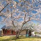 PROJECTS | 千葉学建築計画事務... http://chibamanabu.co.jp/wp2016/wp-content/uploads/2020/09/a6147a6a9ebb4b024c530829af1a26e8.jpg