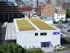 屋根緑化施工例 ジャパンビバレッジ様折板... ジャパンビバレッジ様折板屋根