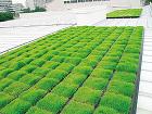 屋根緑化システム|日本地工 マジカルグリーン屋根緑化システム
