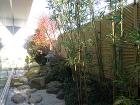 KAKIMOTO CLINIC|一級建築... cms/_img/1438160582_0.jpg