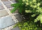風雅伝 Fu-Garden; 意匠 - ... http://fugarden.com/images/BorderGarden/Border.jpg