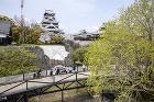熊本城特別見学通路 | PROJECTS... wp-content/uploads/2020/06/4_kumamoto_catsle_2020_316.jpg
