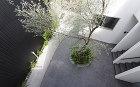 大阪府大阪市に建つ庭のあるデザイナーズ賃貸住宅の外観写真