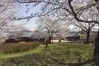 おがやの里 しもだ保育園 | WORKS... http://atelier-y-a.com/wordpress/works/files/2014/03/0101.jpg