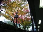 sakuhin2 http://www.kentiku-kikaku.com/image/center/kouyou-2.JPG