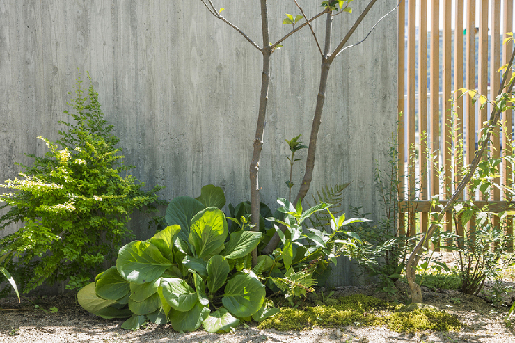 WORKS 西脇の家:奈良の一級建築士事...