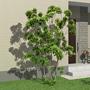合成した樹木添景の影をつける<建築パース作成テクニック> | 実践!建...