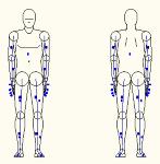 人物モデル化 (成人男性 正面背面立ち姿) DXF | CAD-DAT...