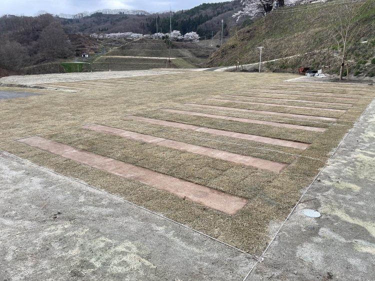 タフコートRS 芝生駐車場 土系舗装 - 株式会社テラサキ