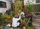 植え込み工事