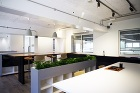 Negroni Factory-Office 撮影:Kowa Ikeuchi